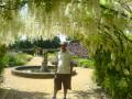 The hanging archway in Beaulieu Gardens